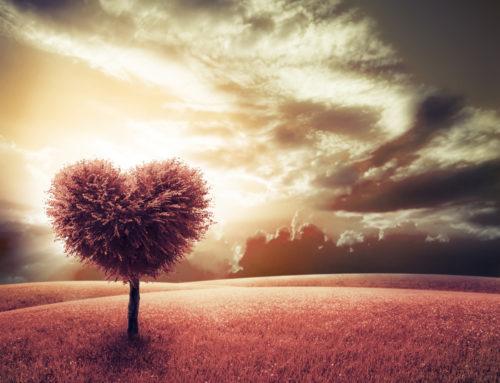 Mit Liebeszauber zu einer glücklichen Beziehung