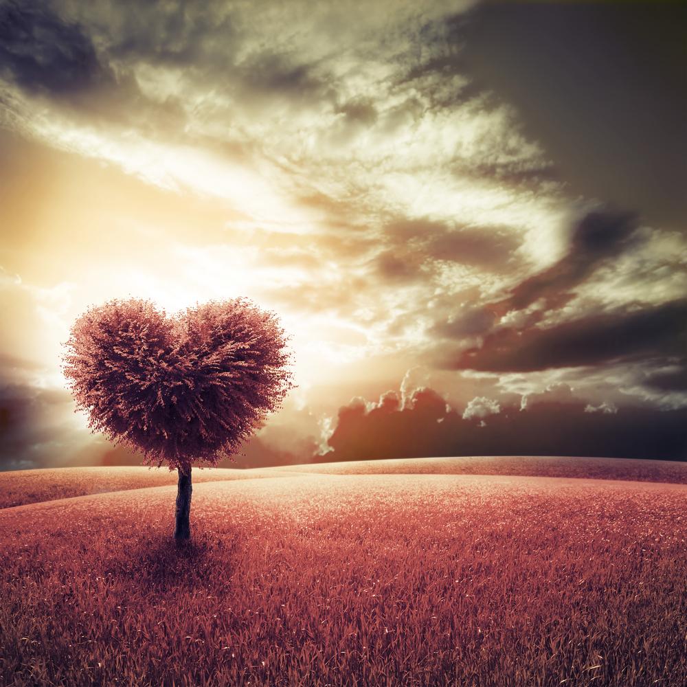 Herzförmiger Baum auf einem großen Feld mit leuchtenden Wolken
